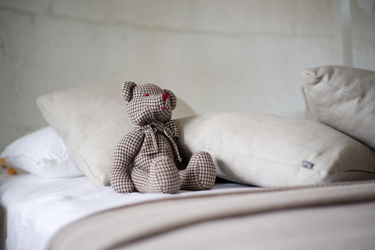 bear-2439923_1280
