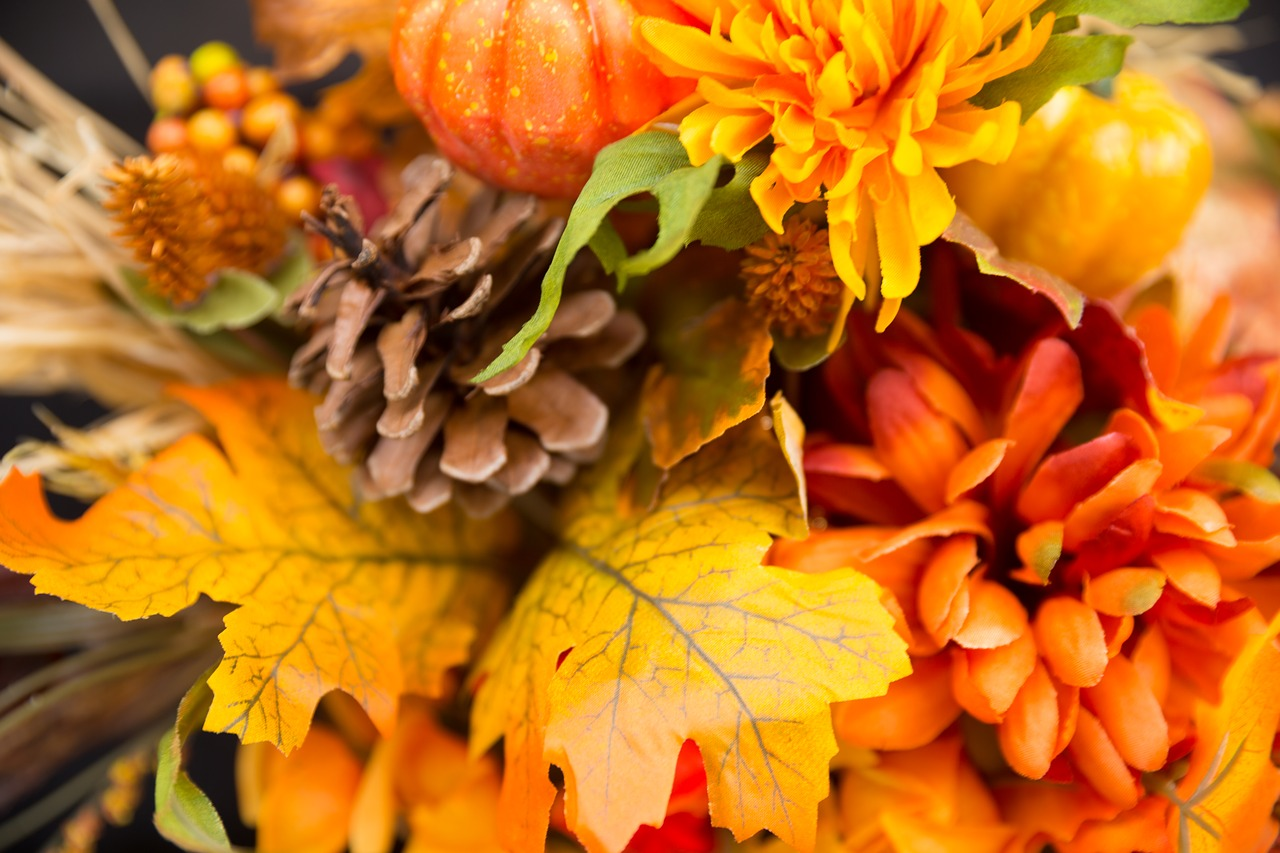 fall-flowers-2716513_1280