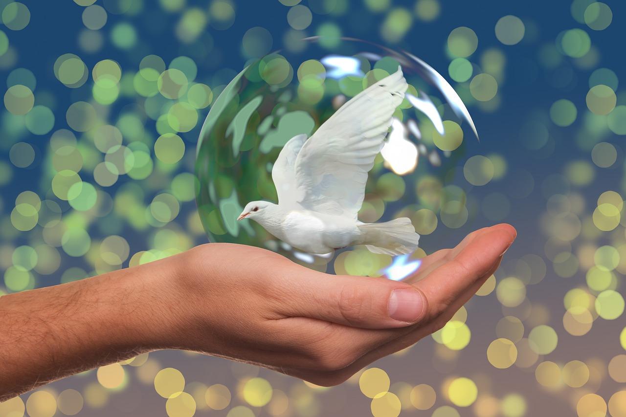 peace-dove-2489589_1280